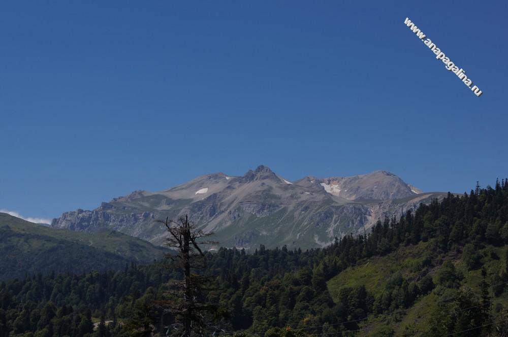 Работа москва промышленный альпинизм